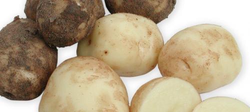 kartofler.jpg